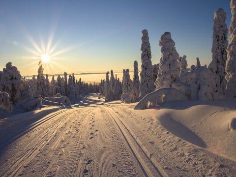 Finlands unique nature - RETTER EVENTS