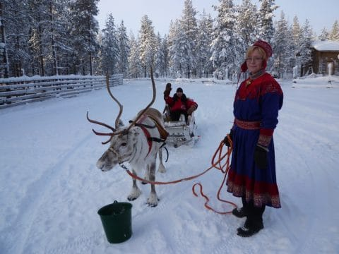 Reindeer Farm Visit with RETTER EVENTS