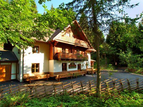 Urige Hütte vom Hotel Moselebauer