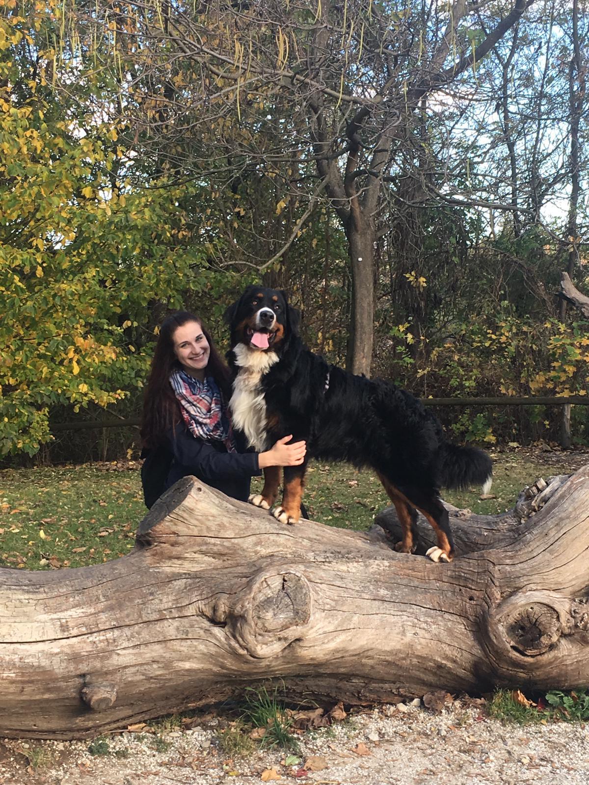 Hund Leo von RETTER EVENTS