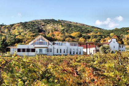 Herbstliche Aussicht auf das Weingut Schlossberg