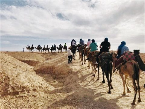 Incentive Trip Marokko: Kamel reiten mit RETTER EVENTS