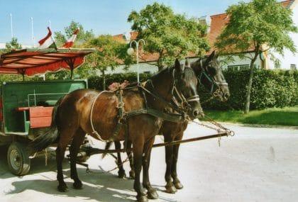 Kutschenfahrt mit RETTER EVENTS
