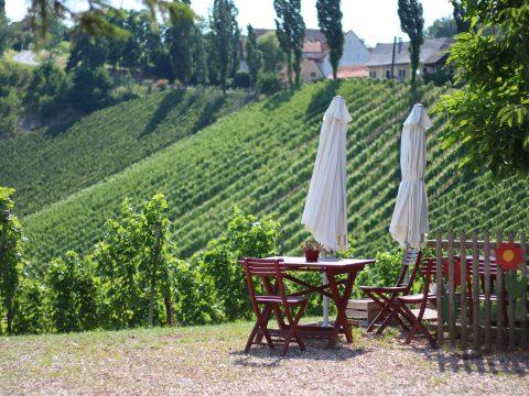 Südsteirische Weinstraße mit RETTER EVENTS erkunden