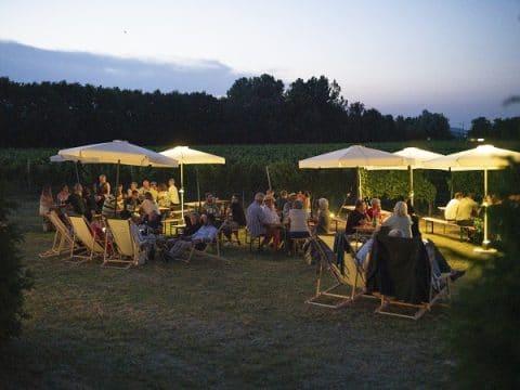 Firmenfeier im Garten in entspannter Atmosphäre